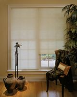 "1/2"" Single Cell Translucent Cellular Honeycomb Shades"